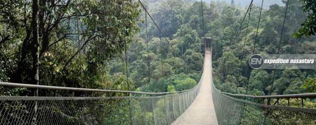 Open Trip Suspension Bridge Situ Gunung Sukabumi